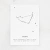 Steenbok letterpers a5