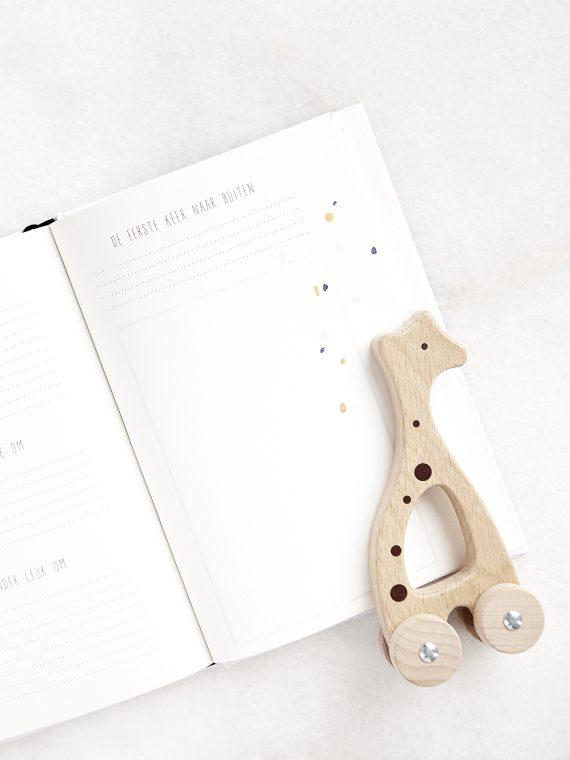 Babyboek binnenkant 5